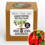 chili paprika
